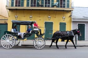 01 saint philip street horse & carriage