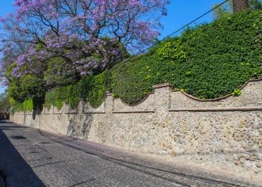 29 mexico city walk to rivera house