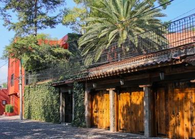 30 mexico city walk to rivera house