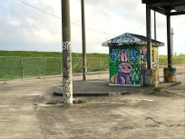 33 end of the world bywater new orleans