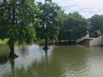 60 flooded armstrong park mother's day flood 2019 new orleans
