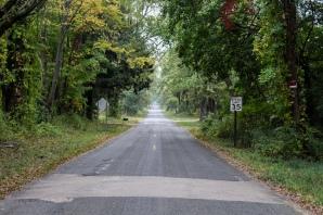 40 verdant michigan road