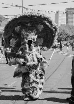 03 mardi gras indians black & white