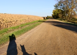 08 me & ollie shadow annandale minnesota