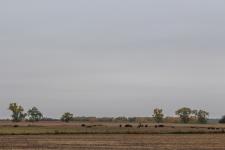 13 south dakota rest stop plains