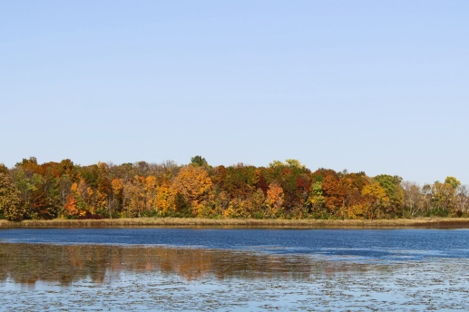 15 granite lake annandale minnesota