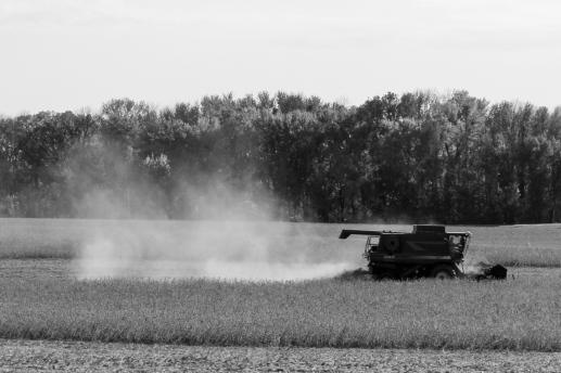 18 minnesota farm machine