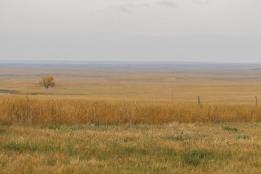 18 south dakota plains