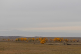20 south dakota plains