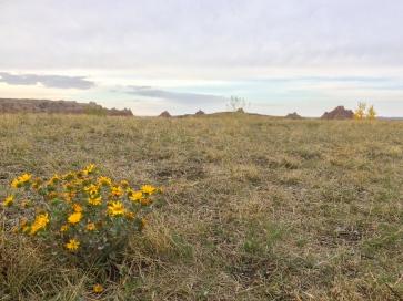 35 badlands south dakota