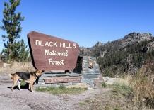 53 ollie black hills sign