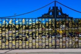63 black hills nature gates