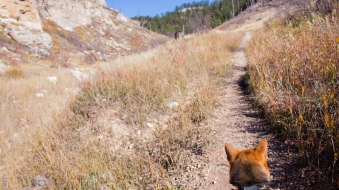 71 black hills south dakota jewel cave hike