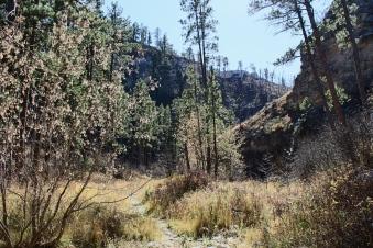 73 black hills south dakota jewel cave hike