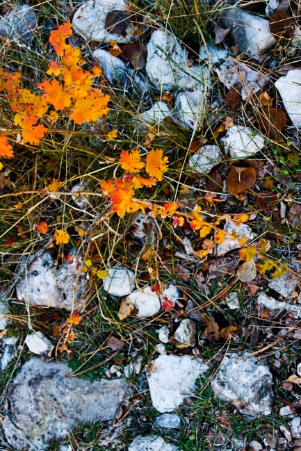 74 black hills south dakota jewel cave hike