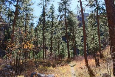 78 black hills south dakota jewel cave hike