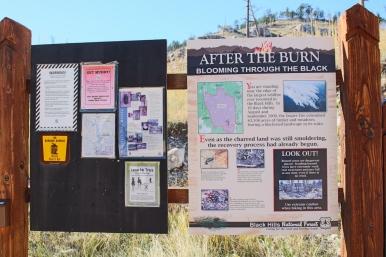 79 black hills south dakota jasper fire info