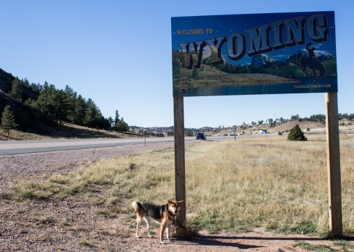 01 ollie welcome to wyoming sign