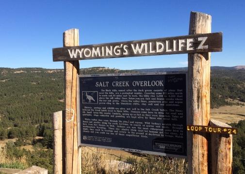 05 wyoming's wildlifez