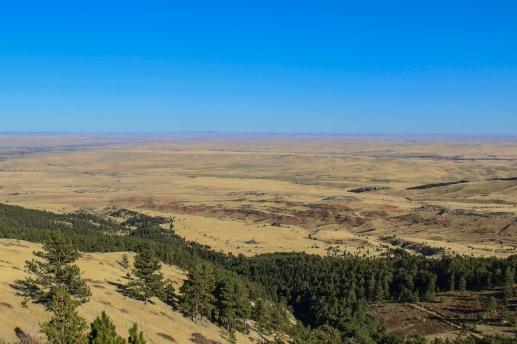 15 big horn mountain view wyoming