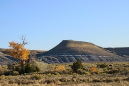 25 big horn mountains wyoming