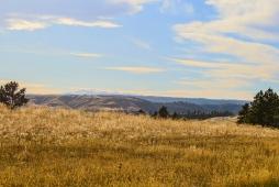 02 montana roadside