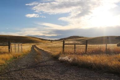 16 montana view