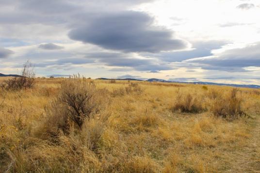 18 bozeman montana trail