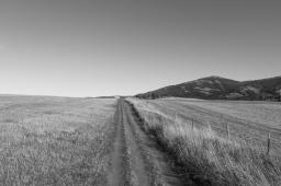 21 bozeman montana triple tree hike black & white
