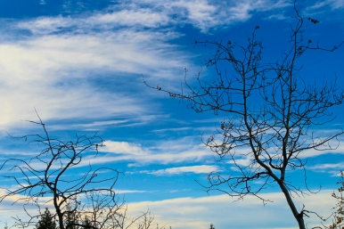28 bozeman montana triple tree hike