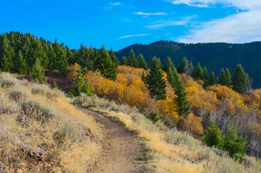 29 bozeman montana triple tree hike
