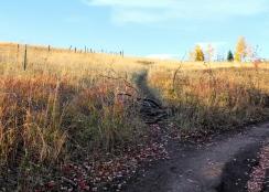 35 bozeman montana triple tree hike