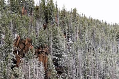52 snowy montana roadside