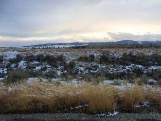 55 snowy montana field