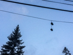 02 whitefish shoes on wire