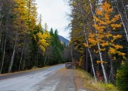 04 glacier national park montana