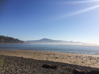 22 tillamook oregon beach
