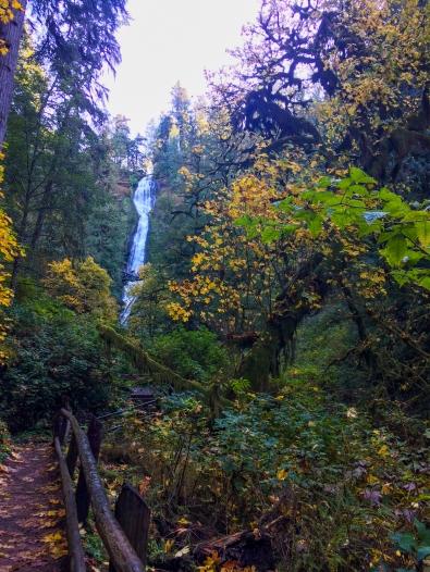 22 tillamook oregon waterfall hike