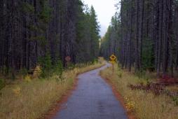 26 glacier national park trail