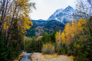 37 glacier national park montana