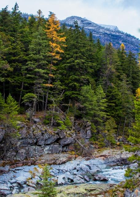 39 glacier national park montana