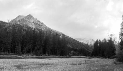 40 glacier national park montana