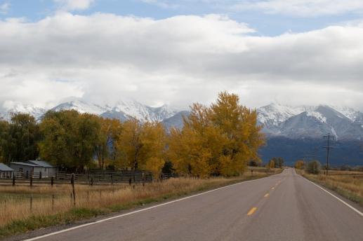 40 montana view