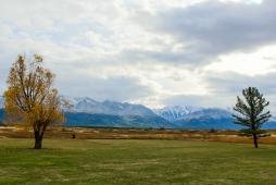 41 montana view