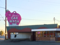 11 elephant car wash seattle