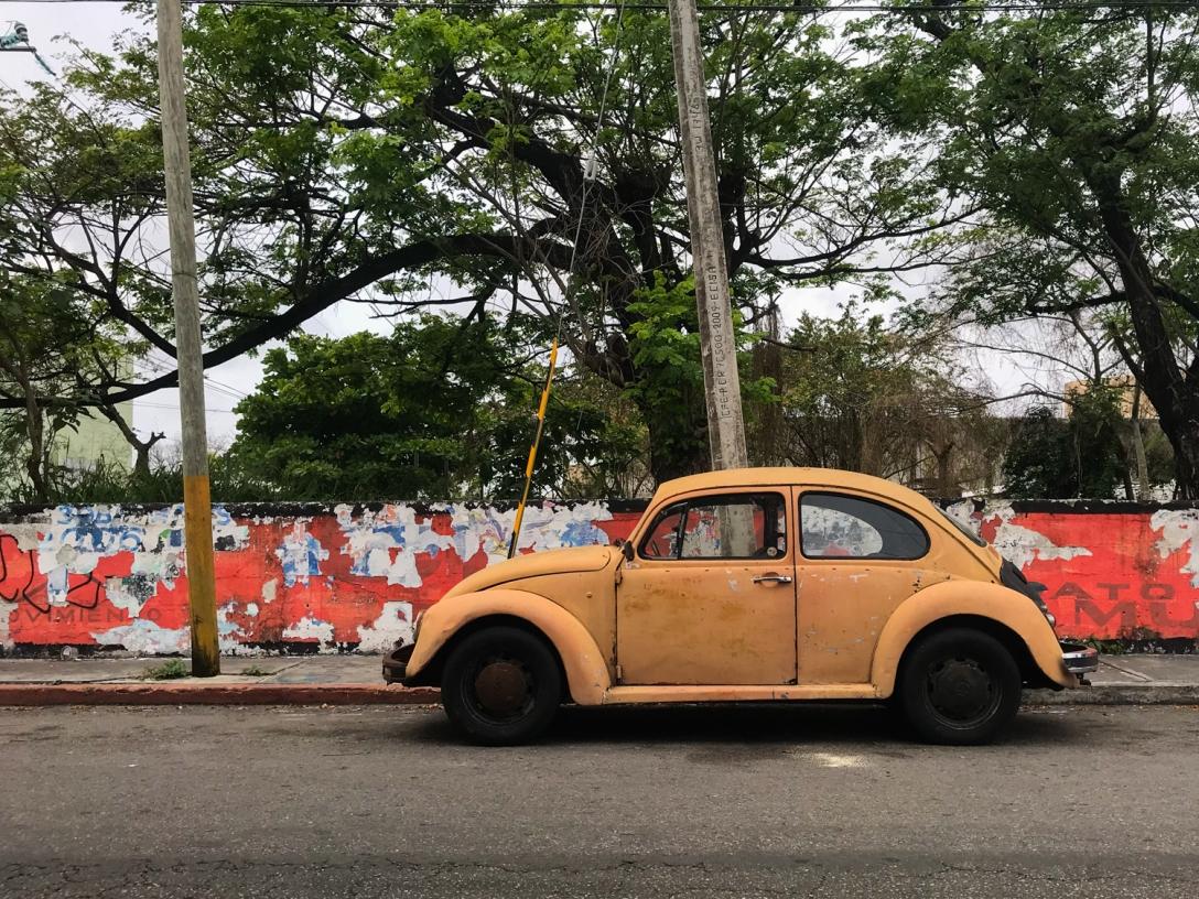 Mexico 2019: Cozumel & Tulum – Angela Calonder