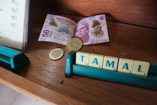 21 suculenta tulum scrabble pesos