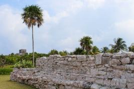 24 tulum ruins