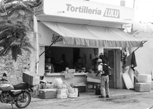 43 lulu tortilleria tulum