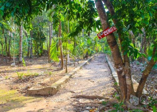 54 cenote calaveras entrance tulum